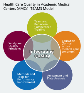 Health Care Quality in Academic Medical Centers: TEAMS Model