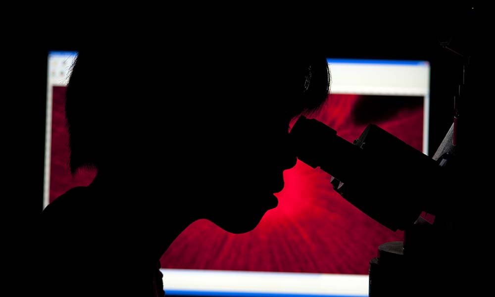 a silhouette of a student looking through a microscope