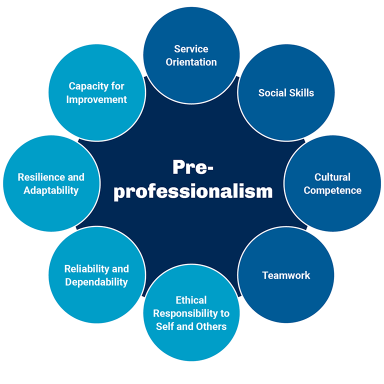A ciruclar graphic illustrating the pre professional competencies for the situational judgement test.